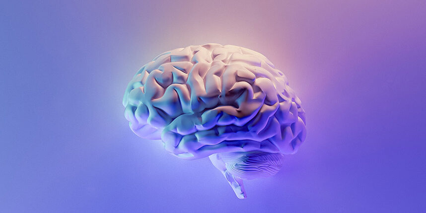 Image of a brain on a pink and purple background